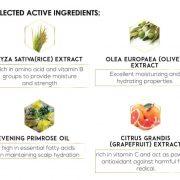 Anti Dandruff Tonic Ingredients JPEG