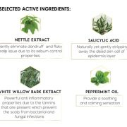 Anti Fungal Tonic Ingredients JPEG