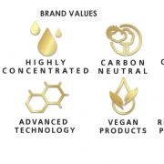 Brand Values JPEG