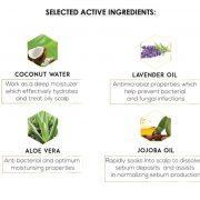 Scalp Cleansing Shampoo Ingredients JPEG